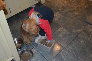 Feeding Oscar