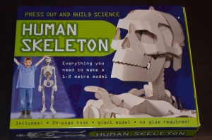 The kit the cardboard skeleton came from.  It was really strong cardboard