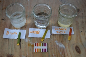 As expected the pH level of the Bicarb solution was more than 7 (alkalinic), water was 7 (neutral) and Citric acid solution was less than 7 (acidic)