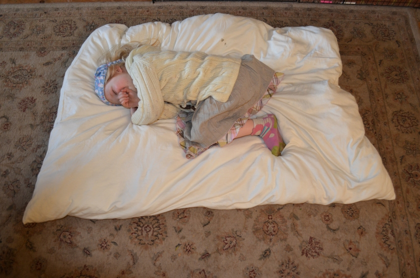 A4 lying on her little house mattress