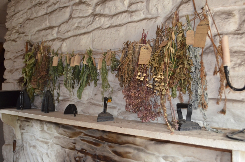T11 noticed lots of lovely herbs drying over the fire place