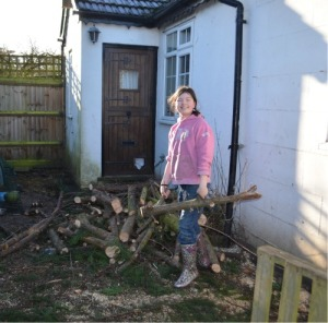 The first thing to do was to move all the logs, branches and general mess from the chicken area