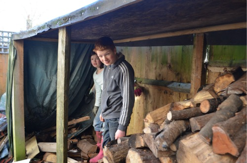 T12 and the girls worked on making room in our log pile for the new logs to be stored and seasoned