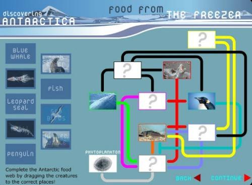 antarctic web2