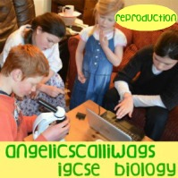igcse-biology-reproduction