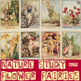 nature study with fairies