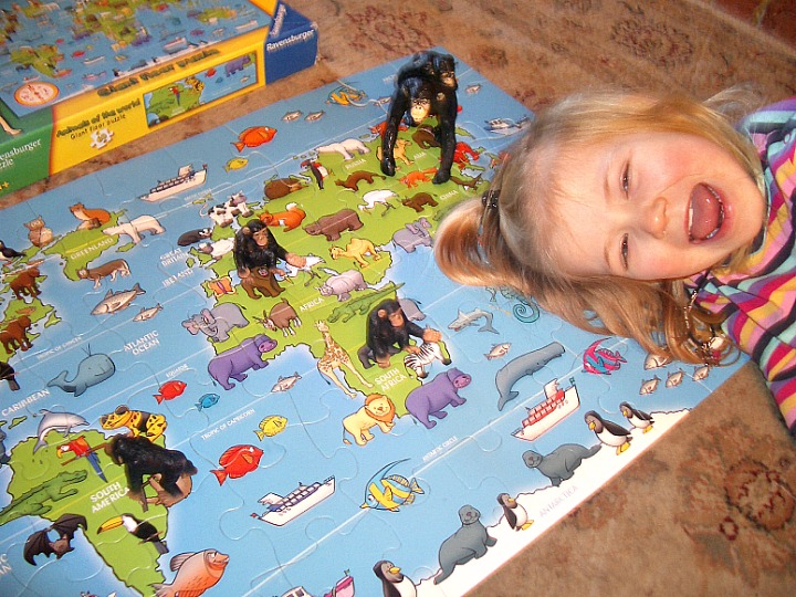 curious, george, animals of the world puzzle