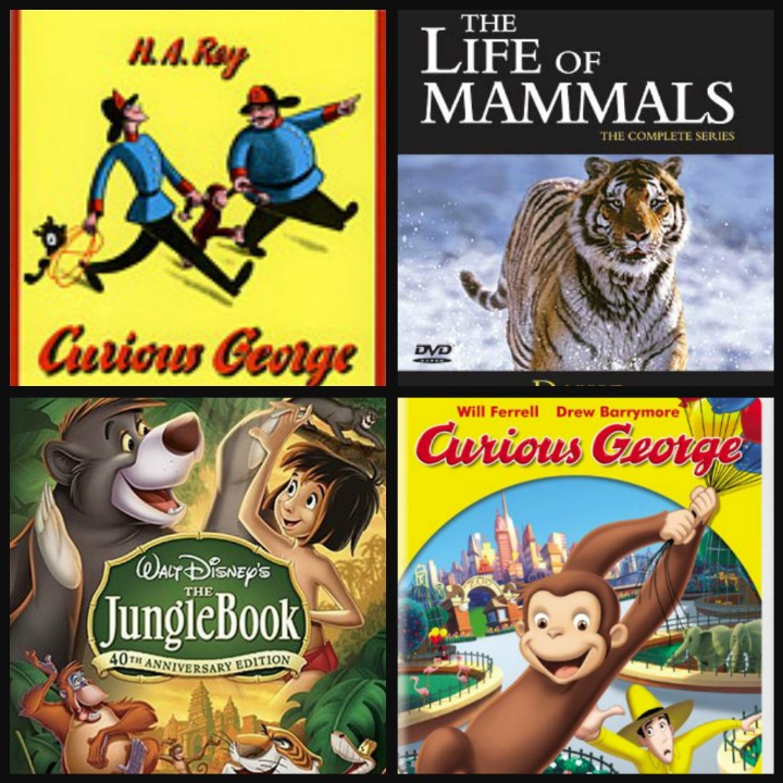 curious, george, resources