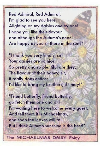 Homeschoolin... Poems About Daisy Flowers