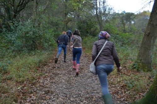 nature walk 6
