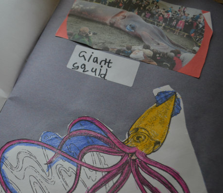 Andrew Lost-home school-science-giant squid