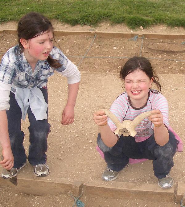 Butser Farm-celts-homeschool-field trip-archeological dig-find