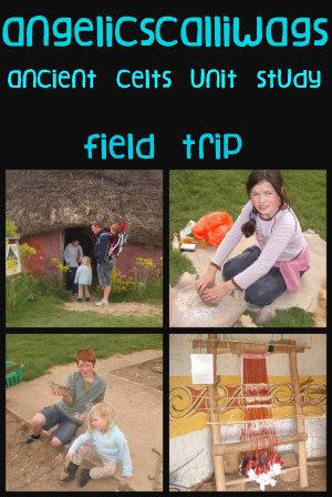 Butser Farm-celts-homeschool-field trip