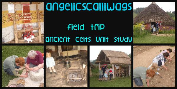 Butser Farm-celts-homeschool-field trip-