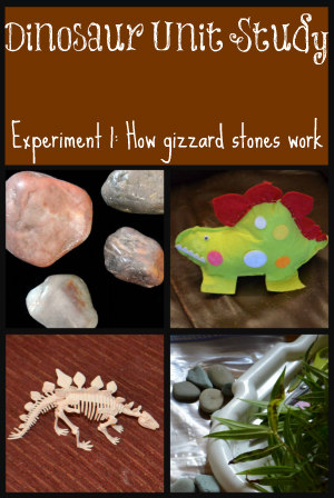 homeschool-dinosaurs-experiment