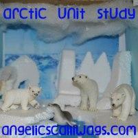 arctic-button