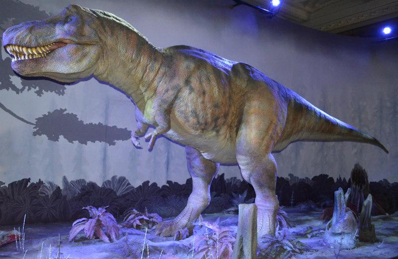 tyranosaurus-rex-1
