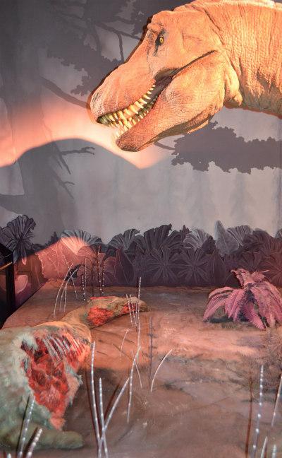 tyranosaurus-rex-2