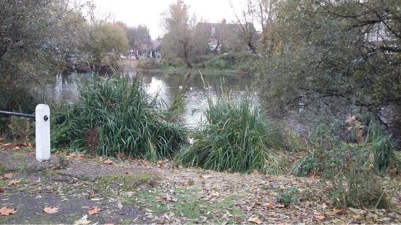 pond9
