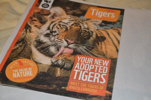 endangered-animals-tigers-10