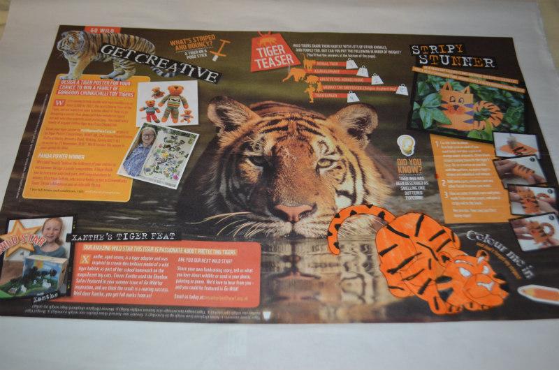 endangered-animals-tigers-7
